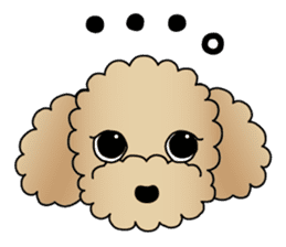 The Toy Poodle stickers sticker #5817125