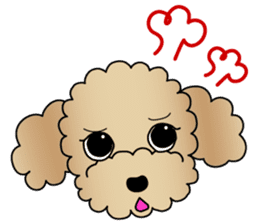 The Toy Poodle stickers sticker #5817127