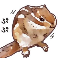 Watercolor squirrel sticker