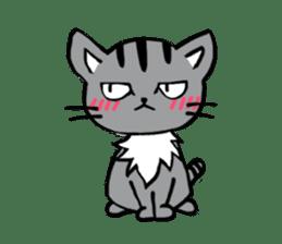 Silver tabby kitten SASUKE sticker #5836706