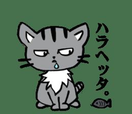 Silver tabby kitten SASUKE sticker #5836707