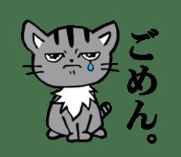Silver tabby kitten SASUKE sticker #5836708