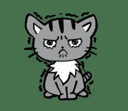 Silver tabby kitten SASUKE sticker #5836709