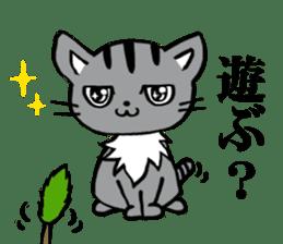 Silver tabby kitten SASUKE sticker #5836710