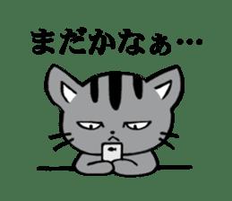 Silver tabby kitten SASUKE sticker #5836713