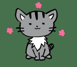 Silver tabby kitten SASUKE sticker #5836714