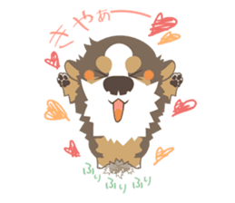 BerneseMountainDog-kurukuru no shippo- sticker #5839569