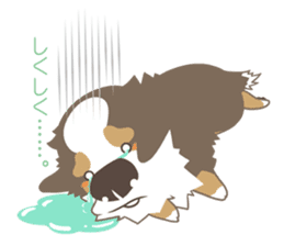 BerneseMountainDog-kurukuru no shippo- sticker #5839581