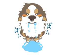 BerneseMountainDog-kurukuru no shippo- sticker #5839586