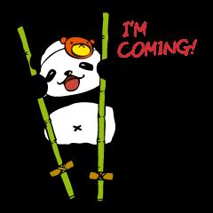 creep panda