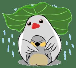 Java sparrow's diary sticker #5893292