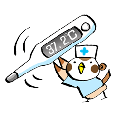 Get well soon with sparrow nurse