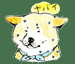 Life of the Japanese Akita sticker #5912762