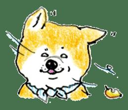 Life of the Japanese Akita sticker #5912776