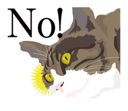 animal house ver.english sticker #5939593