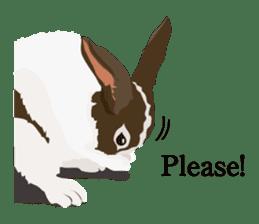 animal house ver.english sticker #5939598