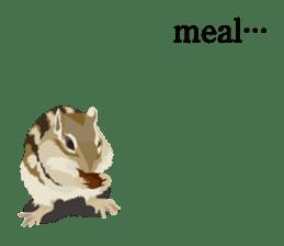 animal house ver.english sticker #5939621