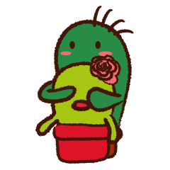 Lilico & Illiya - The Cactus Couple