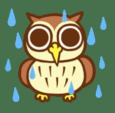 Owl having round eyes sticker #6008689