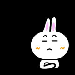 Rabbit tells.