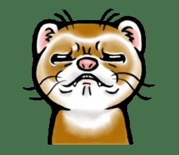 I love ferrets sticker #6034664
