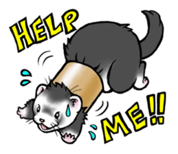 I love ferrets sticker #6034665
