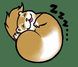 I love ferrets sticker #6034671