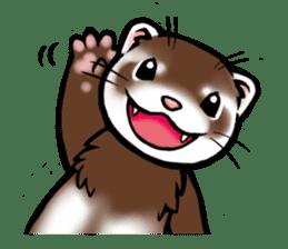 I love ferrets sticker #6034694