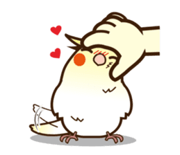 Miss Lovebird-Cockatiel 's home life sticker #6037360