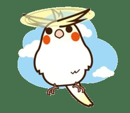 Miss Lovebird-Cockatiel 's home life sticker #6037364