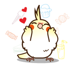 Miss Lovebird-Cockatiel 's home life sticker #6037365