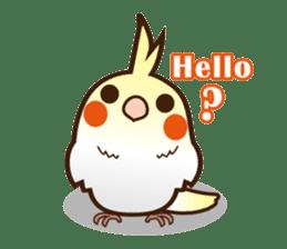 Miss Lovebird-Cockatiel 's home life sticker #6037367