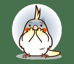Miss Lovebird-Cockatiel 's home life sticker #6037374