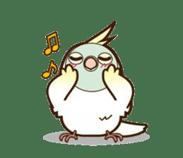Miss Lovebird-Cockatiel 's home life sticker #6037379