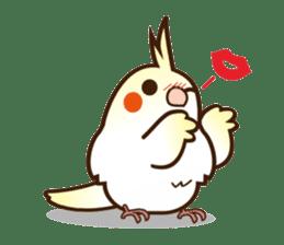 Miss Lovebird-Cockatiel 's home life sticker #6037380