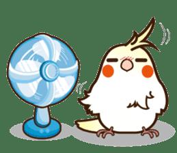 Miss Lovebird-Cockatiel 's home life sticker #6037382
