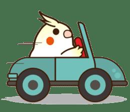 Miss Lovebird-Cockatiel 's home life sticker #6037383
