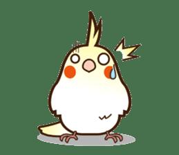 Miss Lovebird-Cockatiel 's home life sticker #6037385