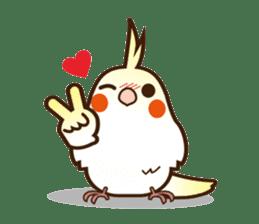 Miss Lovebird-Cockatiel 's home life sticker #6037387