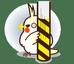 Miss Lovebird-Cockatiel 's home life sticker #6037393