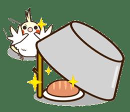 Miss Lovebird-Cockatiel 's home life sticker #6037394