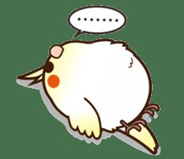 Miss Lovebird-Cockatiel 's home life sticker #6037395