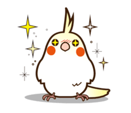 Miss Lovebird-Cockatiel 's home life sticker #6037396