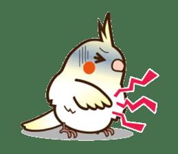 Miss Lovebird-Cockatiel 's home life sticker #6037399