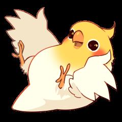 Coca Bird