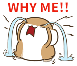 a hamster daily conversation sticker #6131589