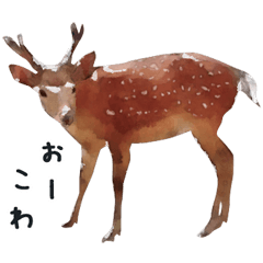 Watercolor deer sticker