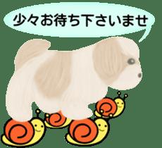 Shih Tzu. Honorific & polite language. sticker #6148834