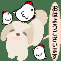 Shih Tzu. Honorific & polite language. sticker #6148836