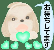 Shih Tzu. Honorific & polite language. sticker #6148839